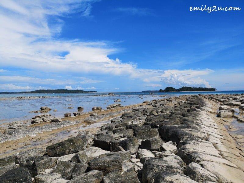 3. low tide