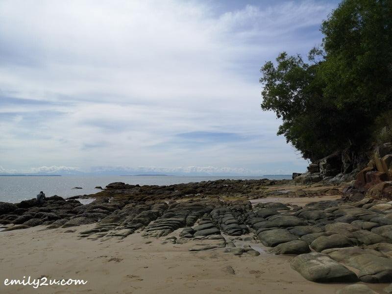 14. low tide