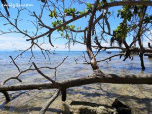 8 Pulau Rusukan Besar Labuan
