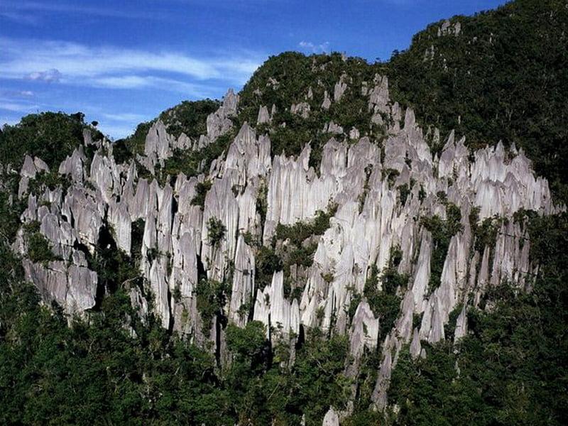 Gunung Mulu National Park @ Sarawak Tourism