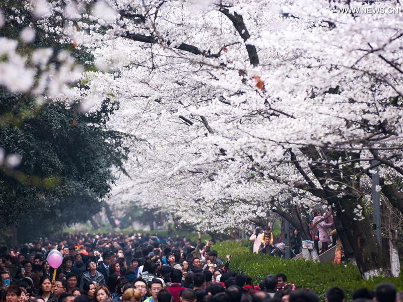 Wuhan University on Luojia Hill (Credit: Xinhua)