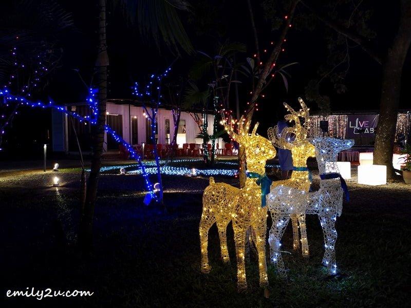 2. reindeer