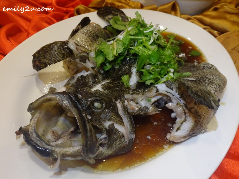 Menu B: Steamed Dragon Tiger Garoupa Fish with Superior Soy Sauce