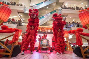5 acrobatic lion dance performance