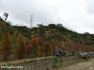 5 Sanwan Township Park