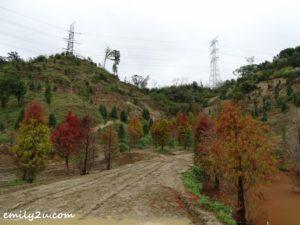 6 Sanwan Township Park