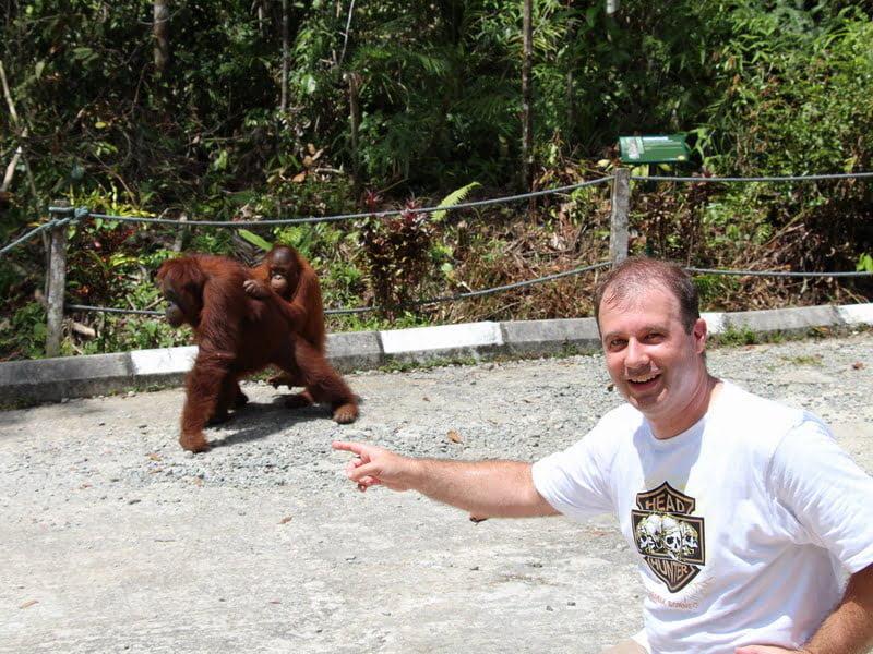 visiting Semenggoh Orang Utan Rehabilitation Centre, Sarawak