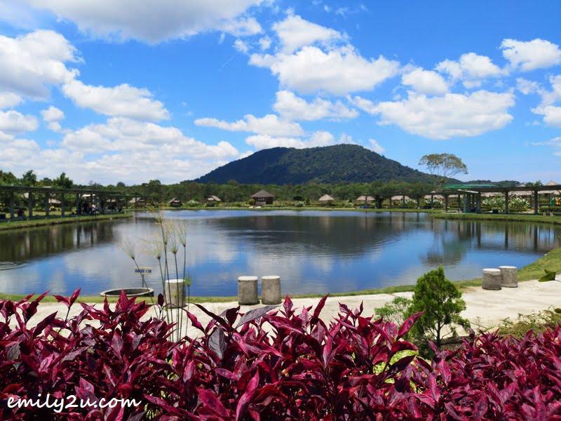 Poyotomo Fishing Park