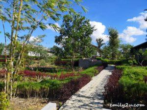 2 D Bamboo Kamp Bintan