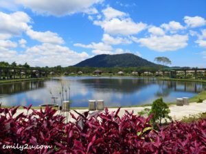 3 Poyotomo Fishing Park Bintan