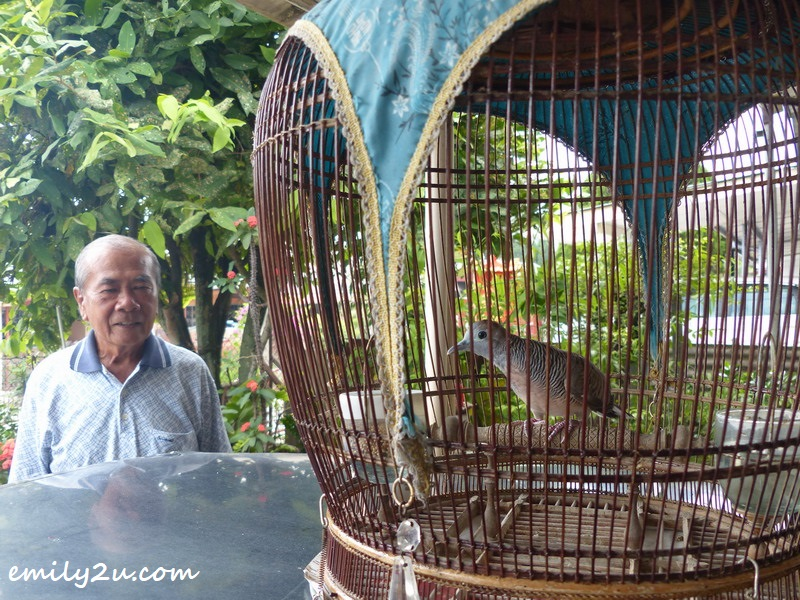 Wong admires his favourite bird