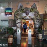 Cat Museum @ Kuching, Sarawak