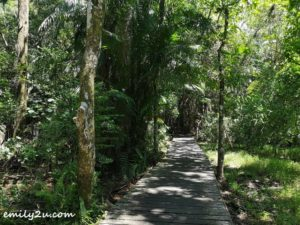 22 Bako National Park