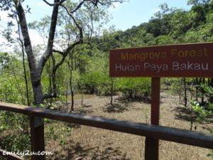 28 Bako National Park