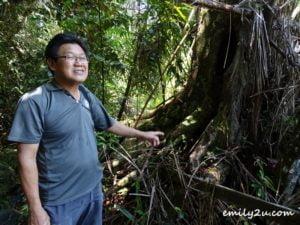 29 Bako National Park