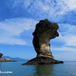 Half-day Tour of Bako National Park, Kuching, Sarawak