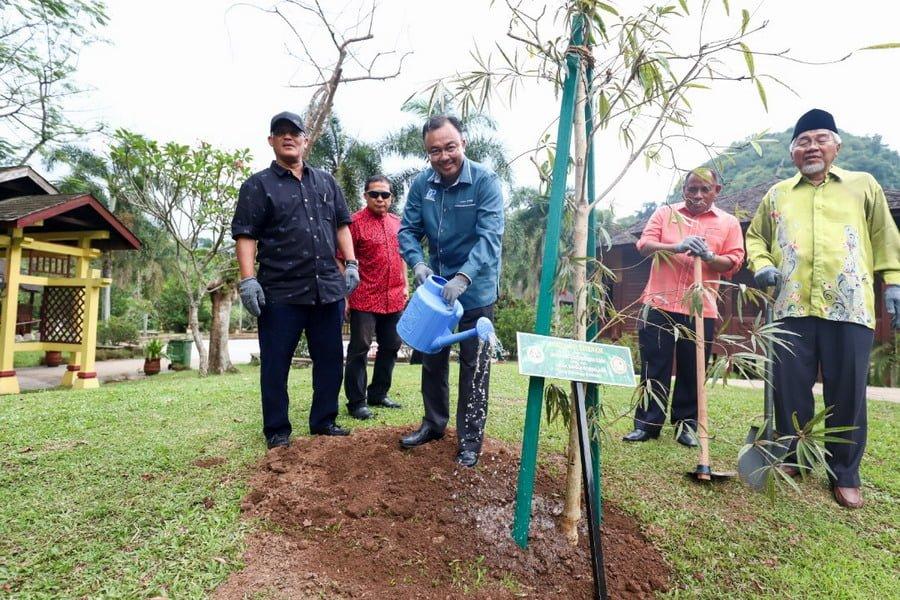 tree-planting activity