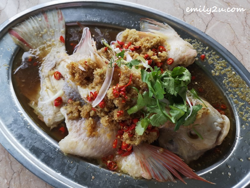 ginger paste steamed fish