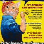 Announcement: Pertandingan Kucing Kampung