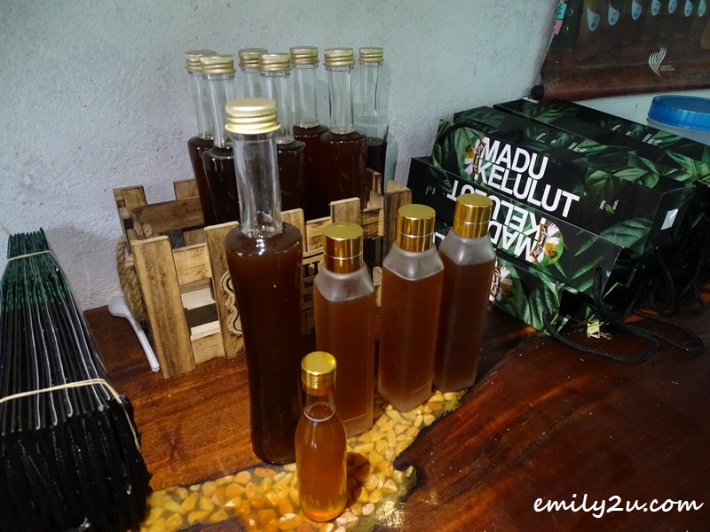Azam Elky madu kelulut (stingless bee honey)