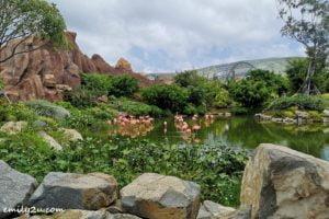 24 Vinpearl Land Nha Trang