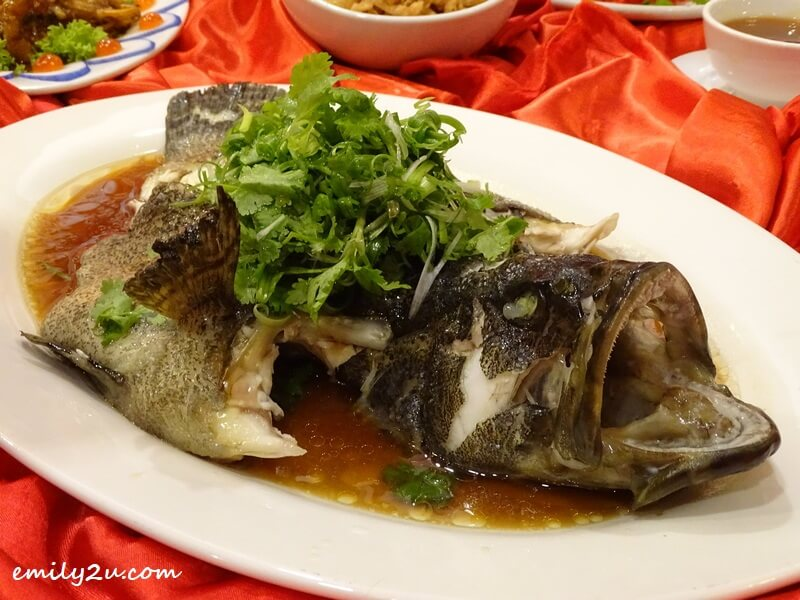 Menu B: Steamed Dragon Tiger Garoupa Fish in Soy Sauce