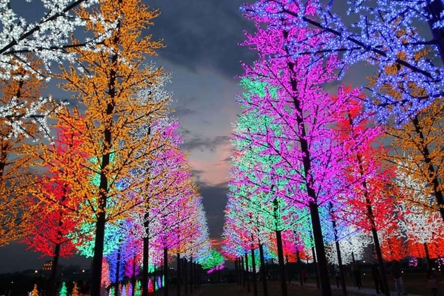 i-City Light Park