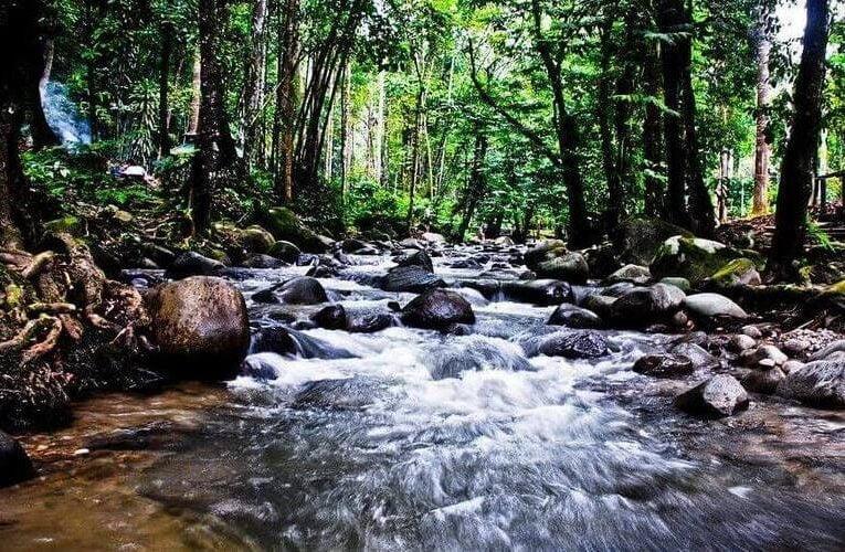 Notice of Reopening: Taman Eko Rimba Kanching and Chongkak Park & Resort
