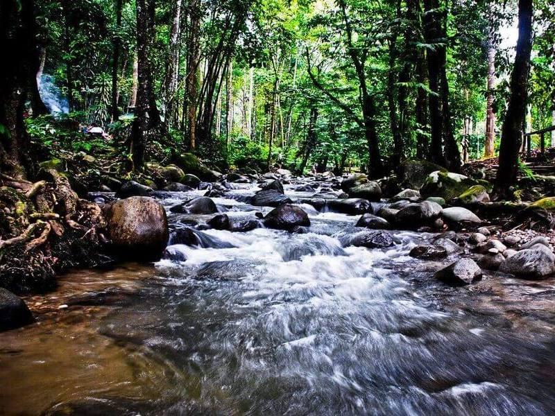 Sungai Chongkak Recreational Forest