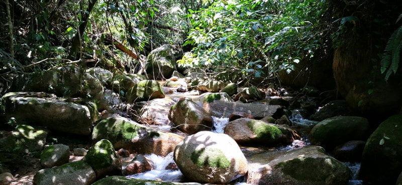 natural landscape along the trail
