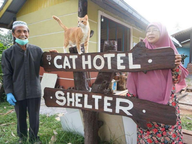 Dr. Taq's parents pose in front of Cat Hotel