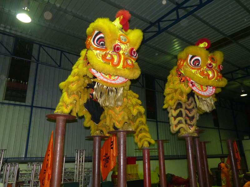 lively lions from Subang Hong Teck Lion Dance Association