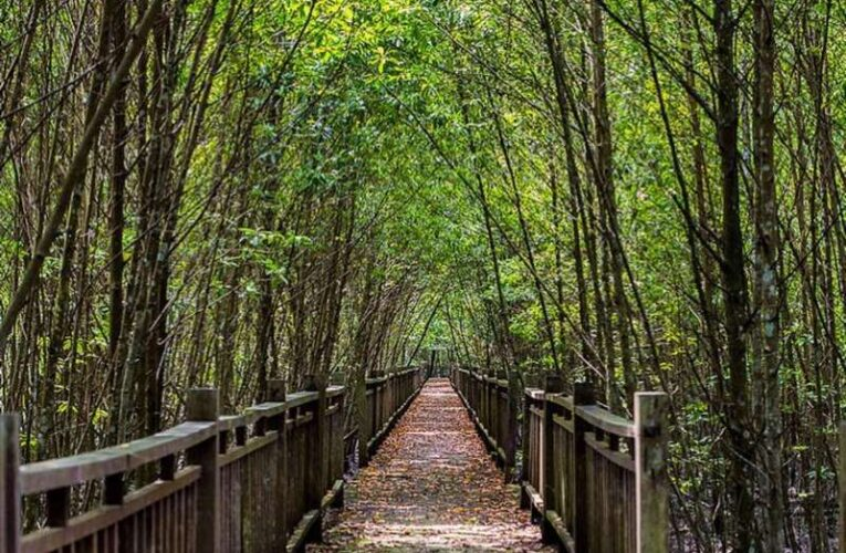 9 Eco-Adventure Locations in Selangor
