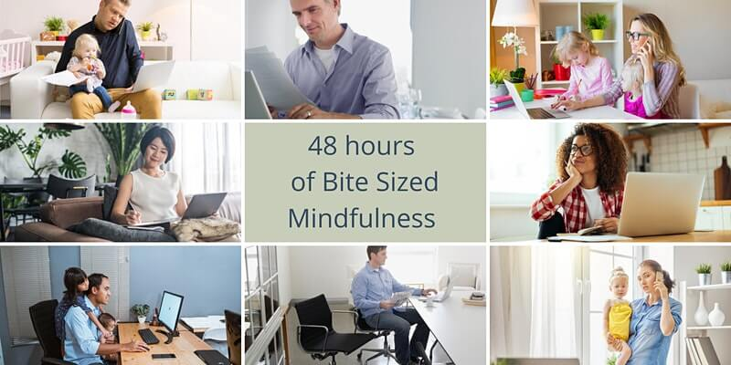 48 hours of Bite-Sized Mindfulness