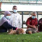2 Petting Zoo Gunung Lang