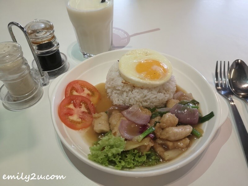 Ginger and Onion Chicken Dish Rice