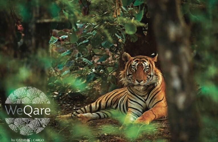 Qatar Airways Cargo Announces Chapter 2 of WeQare – Rewild the Planet