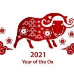 Happy Niu Year 2021