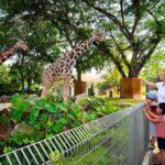 Zoo Negara by Sunway Hotels & Resort