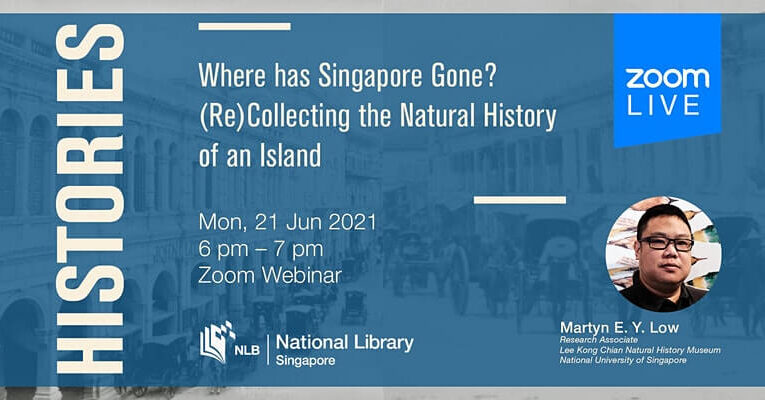 Histories: Where Has Singapore Gone?