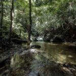 Air Terjun Sungai Tekala by aqhlef_
