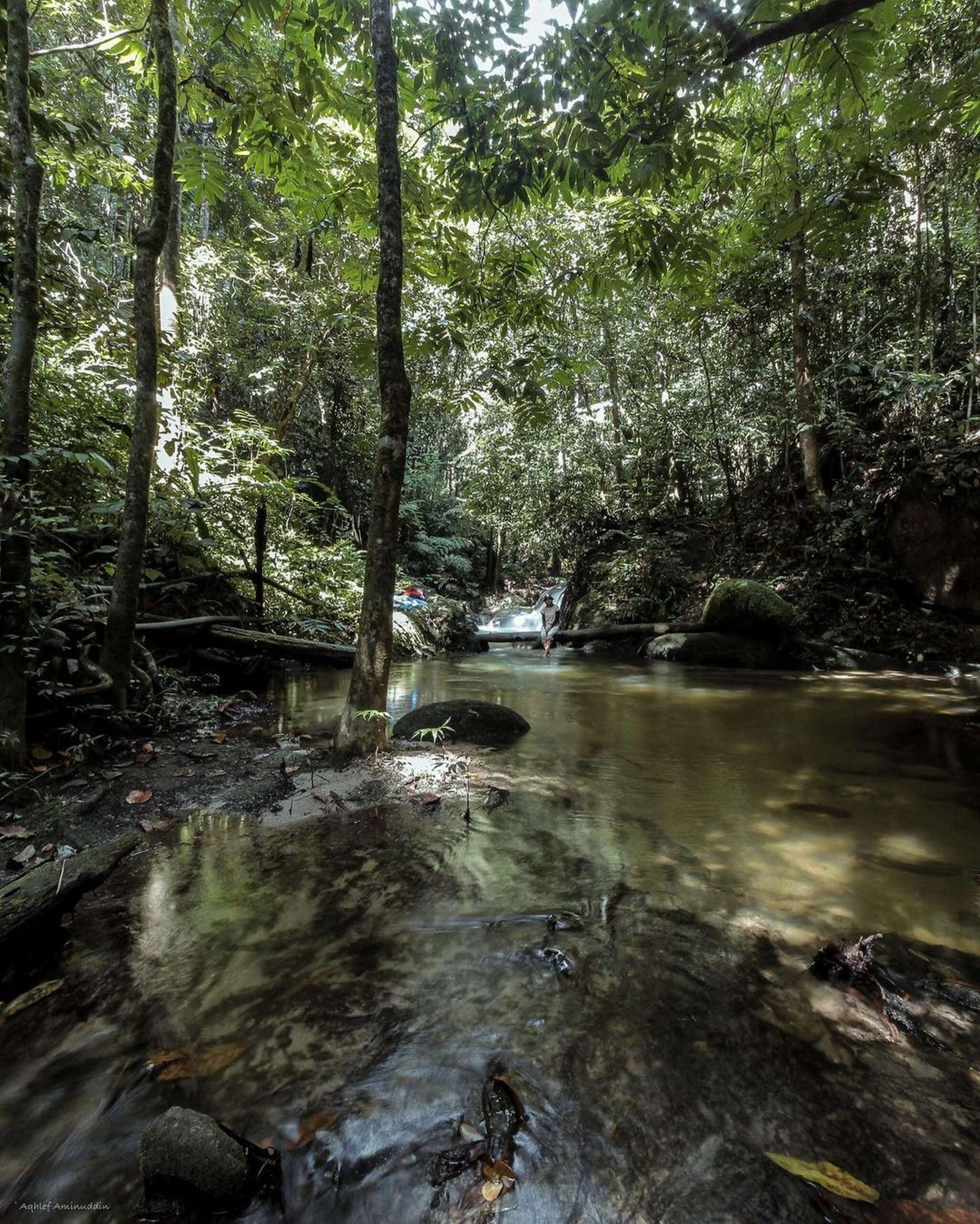 Air Terjun Sungai Tekala