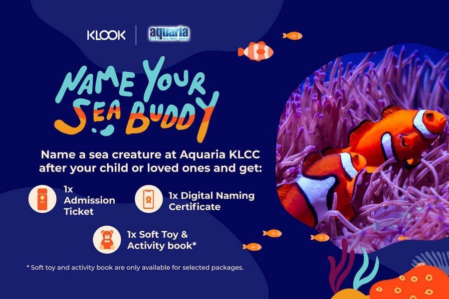 Klook-X-Aquaria_Seabuddy