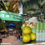Sekinchan Coconut Farm