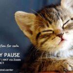 Mindfulness Meditation: Wednesday Pause